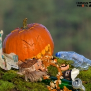 HALLOWEENowa akcja w Rezerwacie Świdwie dynia, śmieci, zbieranie śmieci, human waste zone