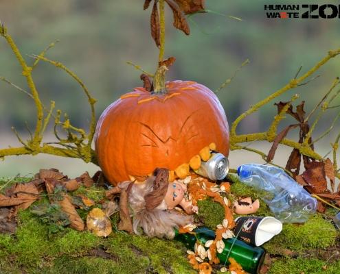 HALLOWEENowa akcja w Rezerwacie Świdwie dynia, śmieci, zbieranie śmieci, human waste zone, liście, gałęzie