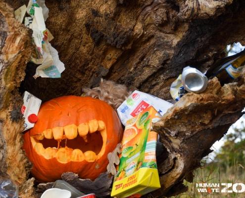 HALLOWEENowa akcja w Rezerwacie Świdwie dynia, śmieci, zbieranie śmieci, human waste zone, korzeń, zwalone drzewo