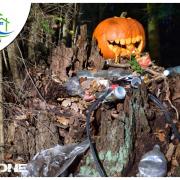 Las bez śmieci - zakup Eko Quada do sprzątania lasów